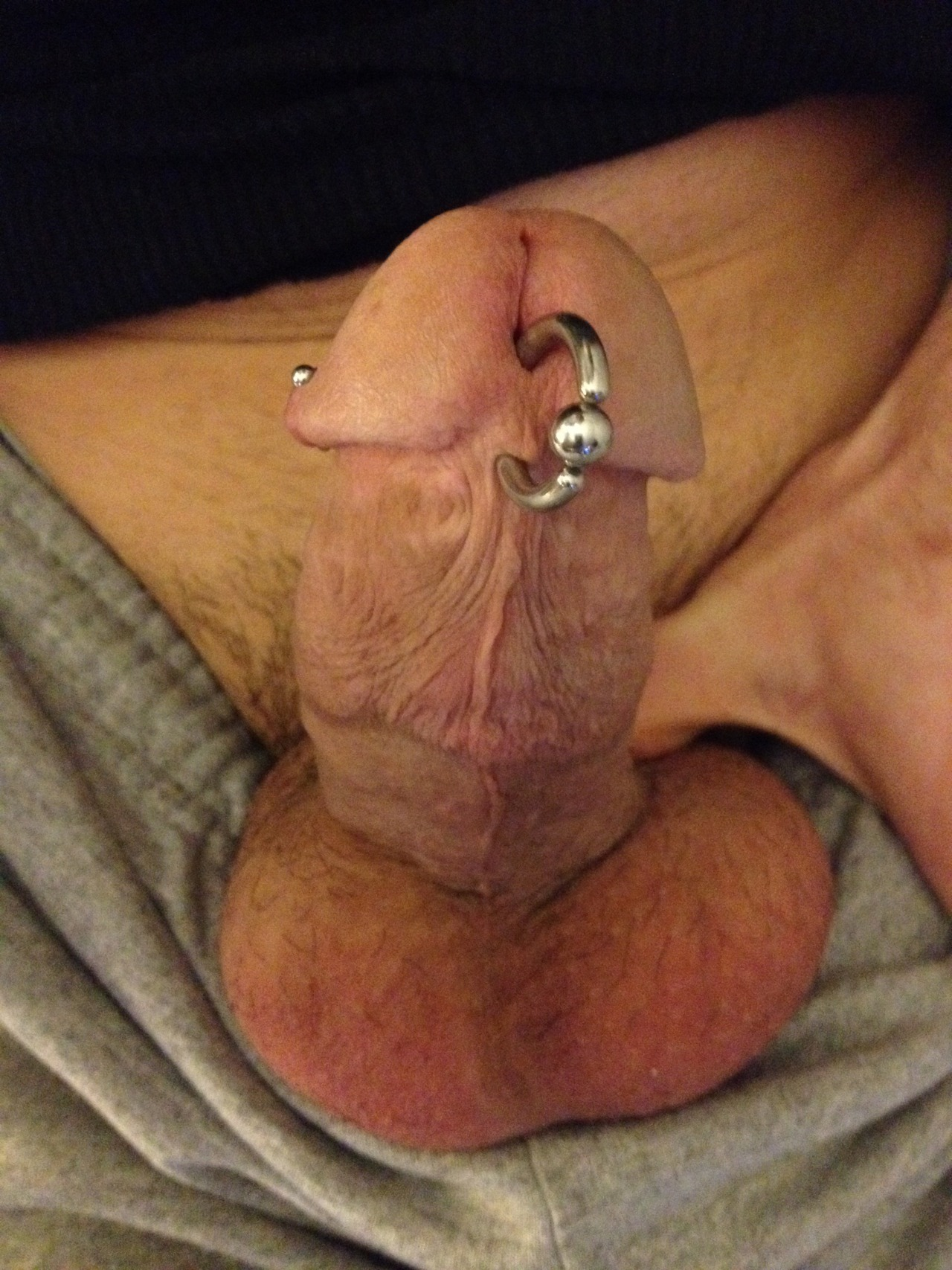 lads-cock-piercing