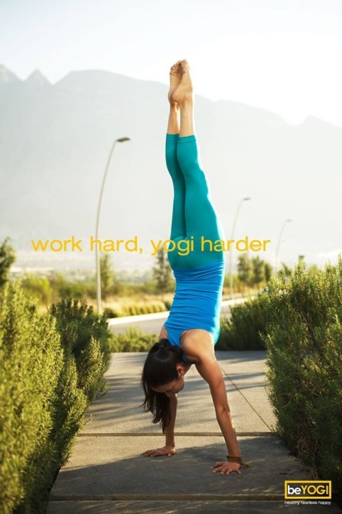 Work hard, yogi harder