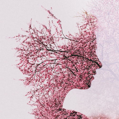nevver:  Double Exposure