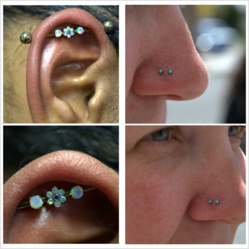 couple of piercings by Lou. industrial jewelry by @anatometal. nostril jewelry by neometal. #nc4l #neocult #piercingsbylou #picoftheday #legitbodyjewelry #legitpiercingslook #nj #northjersey #hawthorne #gardenstateplaza #newjersey #pleasurablebody #pleasurablepiercings #appmember @safepiercing #safepiercing