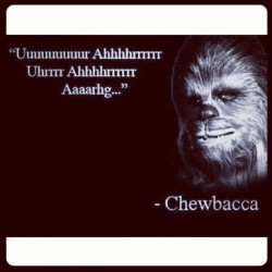 #qotd Quote of the Day. May the Fourth be with you. xo Low (at the forest moon on Endor)