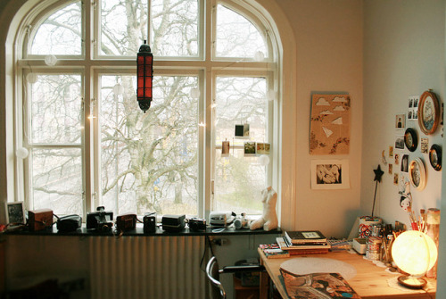 disporum:  my home: work space by -hille- on Flickr.