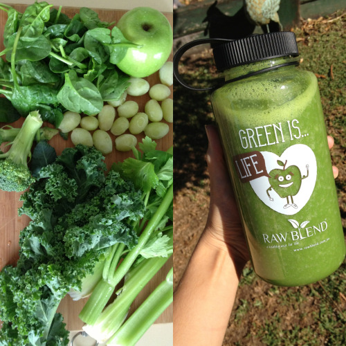 shondellmarie:  Today's smoothie. Green apple, frozen grapes, celery, baby spinach, kale, broccoli, banana, chia seeds and a small amount of honey.