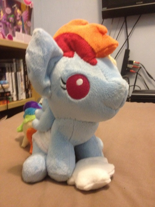 Got my baby Rainbow Dash plush commission from Gypmina today!