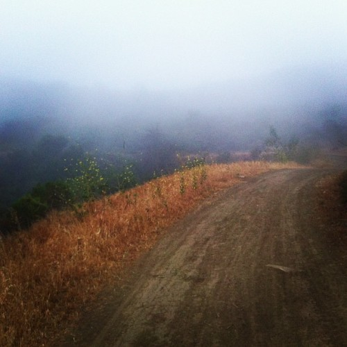Sun, where are you? (at peaceful valley trail)