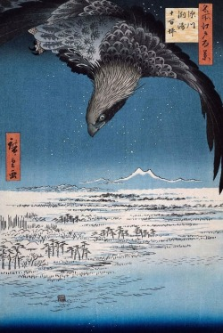 paradoxiskaya:  Eagle Over 100,000 Acre Plain at Susaki, Fukagawa (Juman-tsubo) from the series One Hundred Views of Famous Places in Edo by Utagawa Hiroshige, 1857