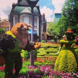 #disney #waltdisneyworld #epcot #flowerandgarden #belle #beast #beautyandthebeast #france