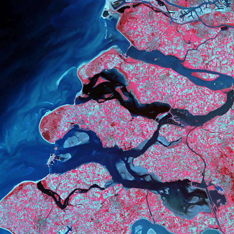 Along the southern coast of the Netherlands, sediment-laden rivers have created a massive delta of islands and waterways in the gaps between coastal dunes. After unusually severe spring tides devastated this region in 1953, the Dutch built an elaborate system of dikes, canals, dams, bridges, and locks to hold back the North sea. Image courtesy of USGS National Center for EROS and NASA Landsat Project Science Office.