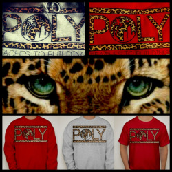 The LEOPARD is BACK ! ;) BEACHES TO BUILDINGS: Crew necks: $35 T-shirt: $25  Order today at www.facebook.com/BeachesToBuildings