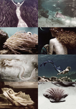 "♔ MYTHS - Mermaids ""Mermaids are legendary aquatic creatures with the head and torso of a human female and the tail of a fish. The male version of a mermaid is called a merman; gender-neutral plurals could be ""merpeople"" or ""merfolk"". Various cultures throughout the world have similar figures."""