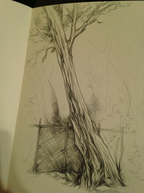 quiksilvr:  trees are strangely therapeutic to draw.  