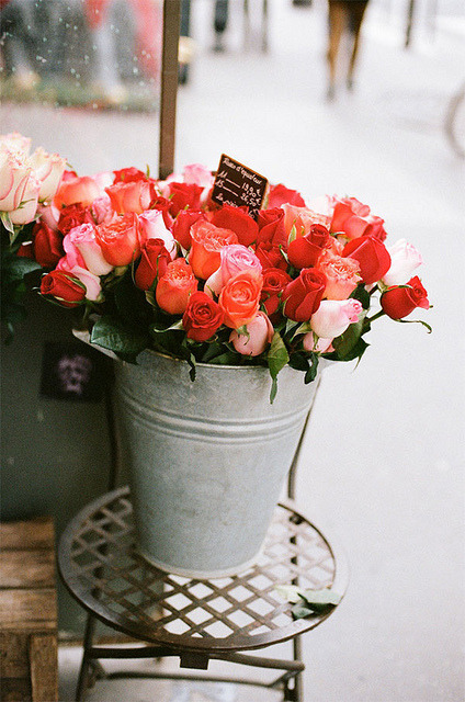 roses by {this is glamorous} on Flickr.