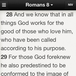 romans8 is everything tonight. forward motion. constant progress. steadily moving towards the goal. contemplated giving up…then remembered who&what was given up for me…keep going.