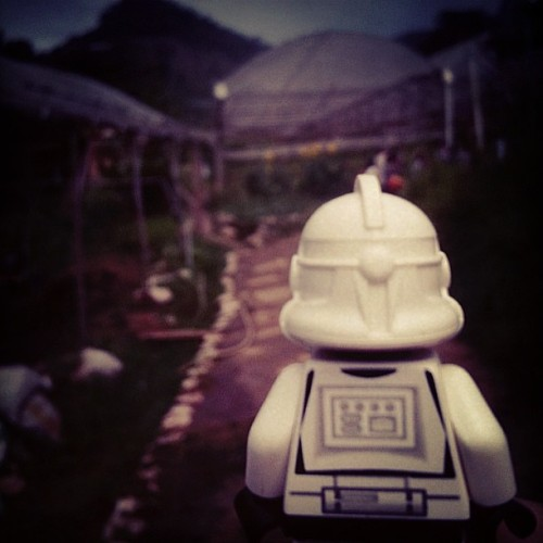Trooper at Cameron! #trooper #starwars #cameron #instamood #instadaily #instaphoto #iphonesia #iphonegraphic