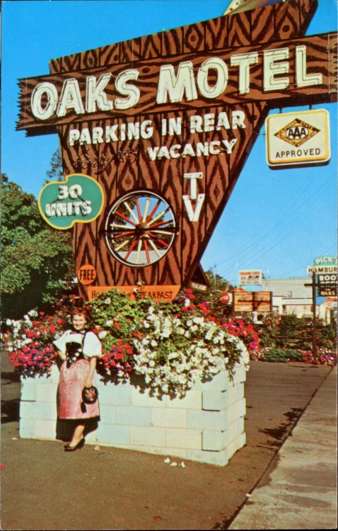 Oaks Motel postcard - Cloverdale, California USA (date unknown) Copyright © SwellMap on Flickr.  All rights reserved.Found via the VINTAGE MOTEL SIGNS ONLY! group pool.Located on the old surface-street routing of U.S. Route 101, this motel is still there as the Cloverdale Oaks Inn but now has a small, internally-lit plastic sign that only an overzealous city planning commissioner could love.  As seen in the background, Pick's Drive-In is also still there but it has lost its old, glorious sign.