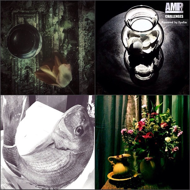 "AMPt Challenge: Still Life (Nature Morte) Feature . . The judges are still voting on nominations to go to the Shortlist board for the AMPt - Still Life challenge on EyeEm . . In the meantime here are 4 images which received a small amount of ""likes"" on EyeEm, but received votes from the judges for interpretation of the theme in the nomination rounds. . . Please stop by their feeds to congratulate them: Clockwise from top left: . . @_owlz_ . . @mysticmermaid . . @theliv . . @jessylovesyou . . Keep watching for the short-list of the final 8 and when voting will be open on amptcommunity.com.  All nominated images can be viewed on http://pinterest.com/amptcommunity/ampt-still-life-nature-morte-nominations/ . . To find out more about AMPt Community: http://amptcommunity.com/  TEACH 