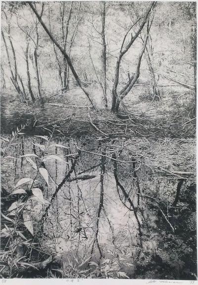 #takase_motohiko, #etching, #landscape