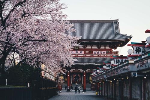 takashiyasui:  Asakusa in the morning