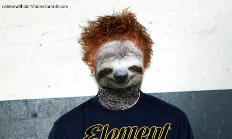 sl0thgrunge:  celebswithslothfaces:  As requested, Ed Sheeran.  †☯ click for more sloth grunge ☯†