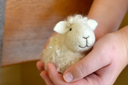 bearcreekfelting:  Needle Felted Sheep by Teresa Perleberg www.bearcreekfelting.com