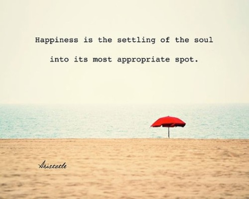 Happiness is the soul