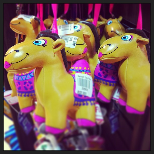 Bahraini Camels 🐪 💝 (at Bahrain International Airport (BAH))