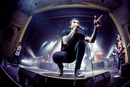 likebutterfliestoflames:  The Amity Affliction