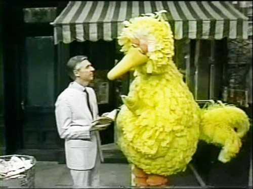 inothernews:  sesamestreet:  Happy birthday to Big Bird *and* to Mr. Rogers!  Is this the time Mister Rogers told Big Bird to stay off his turf?