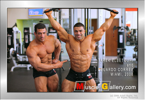 Tarek Elsetouhi and Eduardo Correa  [view all posts of Tarek]   [view all posts of Eduardo]