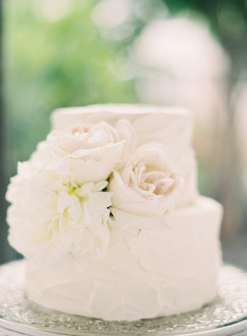 cake by olexa's | photo rylee hitchner