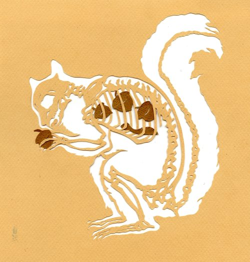 inkhead:  what squirrel ate, paper cut, 2013 bone a day   inkhead