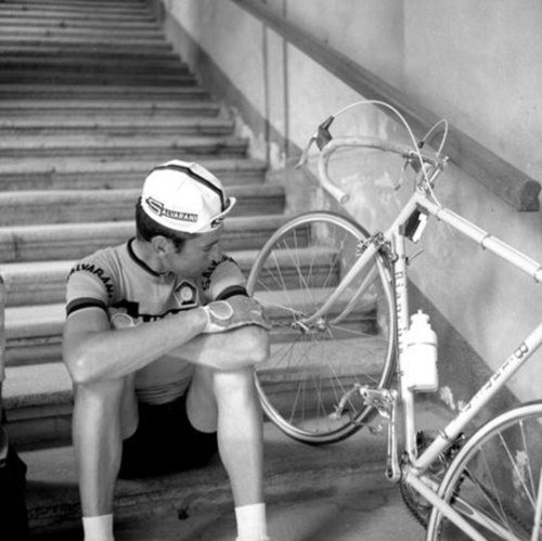 cadenced:  Photography of Felice Gimondi taken Simon Lamb's look at his favourite cycling photographs found on the Rapha blog.