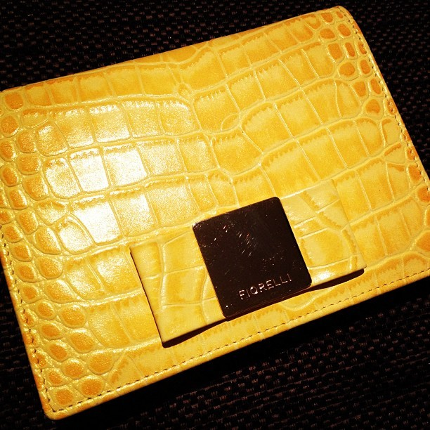 justbeperfecthoney:  My new Fiorelli passport holder:)