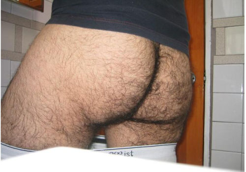 thehairiestmen:Posting some old pics from the hairiest men bate bank.Submit your hairiest self pics here.The hairiest men are the best men.I love a hairy ass.