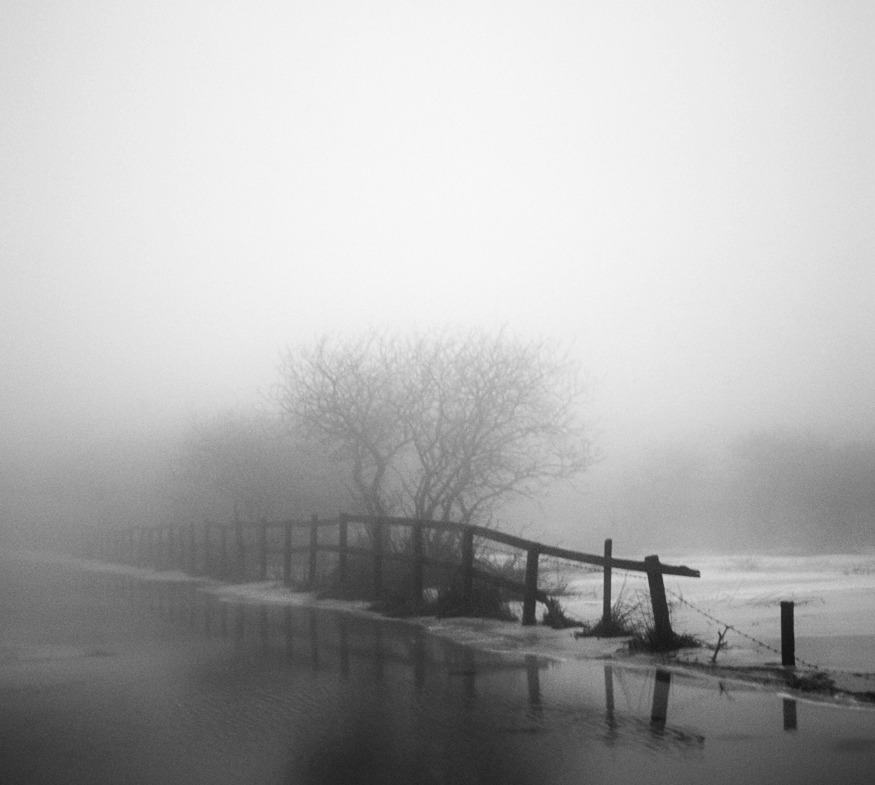 photowilliams:  Cold Misty Morning