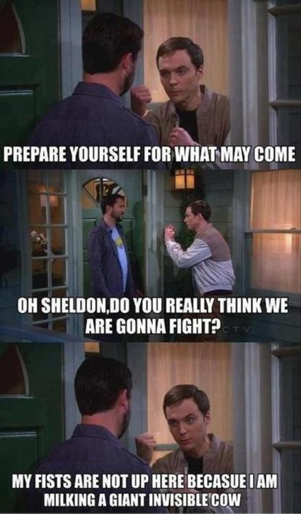 Will Wheaton and Sheldon Cooper on fights