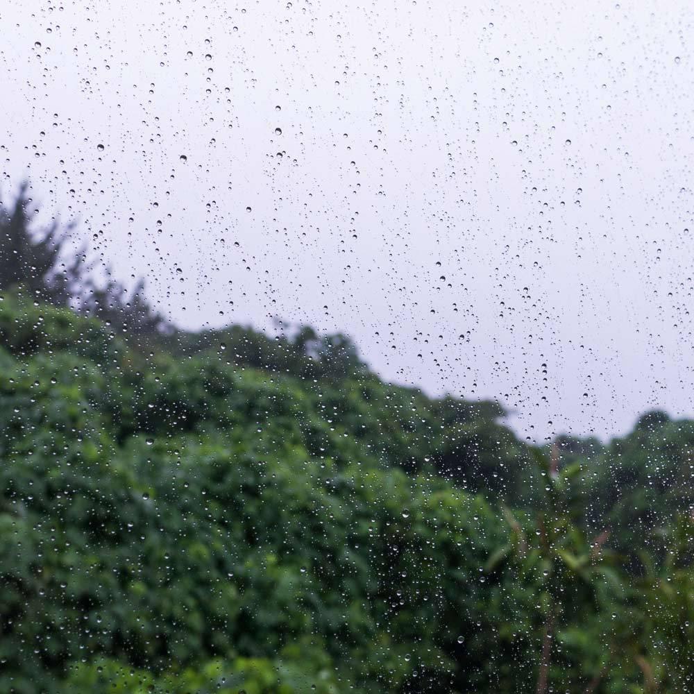 屋久島の雨、山々