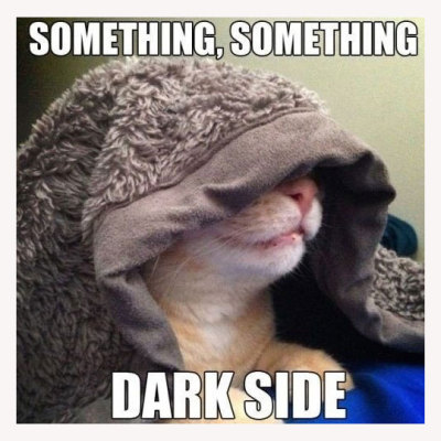 gingerbrownies:  Sith kitty