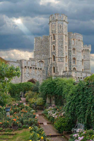 wanderthewood:   Rose garden at Windsor Castle, England by Bobrad