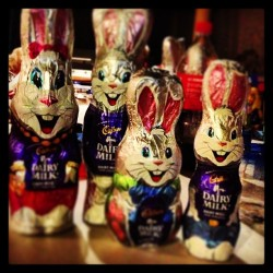 #easter #bunny #rabbits