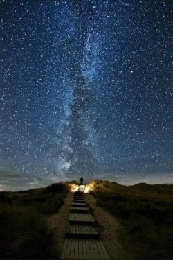 "niick4:  ""Heavens Trail"" A place in Ireland where every two years on June 10-18 the stars line up with this path."