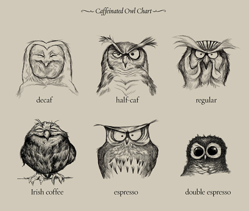 Caffeinated Owls | Print