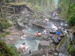 nirvikalpa:  Cougar Hot Springs, Oregon