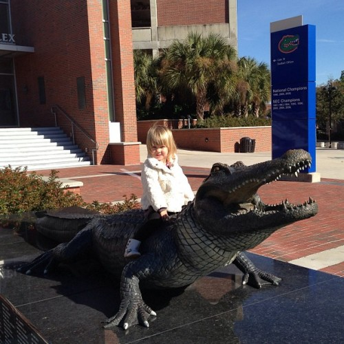Gator wrastlin' (at Ben Hill Griffin Stadium)