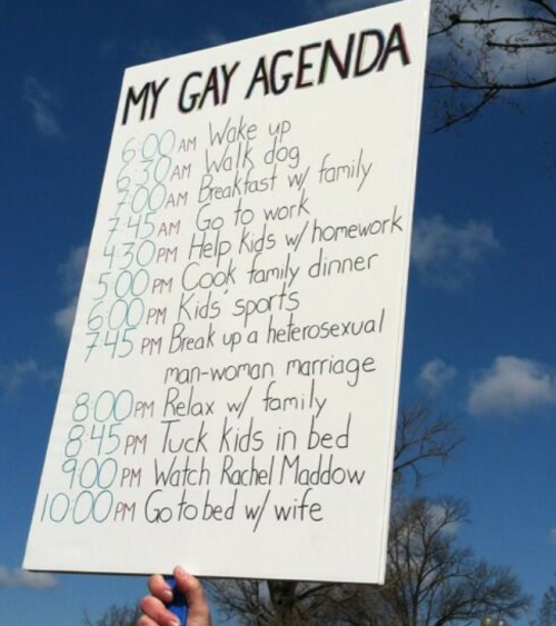"lezbhonest:  brooklynmutt:  Homosexual agenda REVEALED! (via @jbendery)   ""It's very dear to me, the issue of gay marriage. Or as I like to call it: 'Marriage.' You know, because I had lunch this afternoon, not gay lunch. I parked my car; I didn't gay park it."" - Liz Feldman"