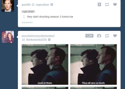 ninjakittengoesrawr:  So this happened. I don't think Sherlock and Mycroft are very impressed with us….
