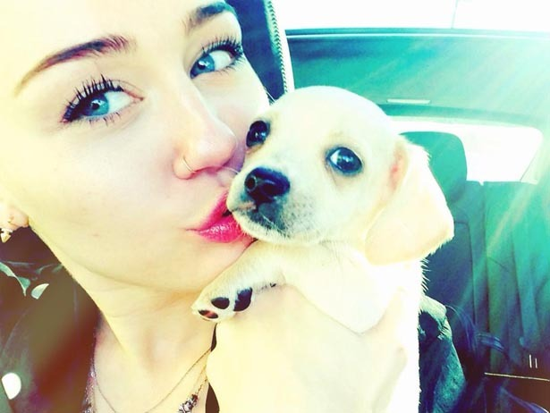 Miley + New Puppy + Kisses = Adorbs