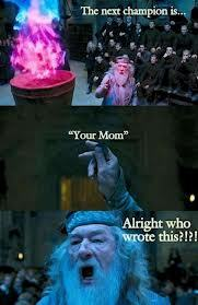 thepotterof-harry:  your mum