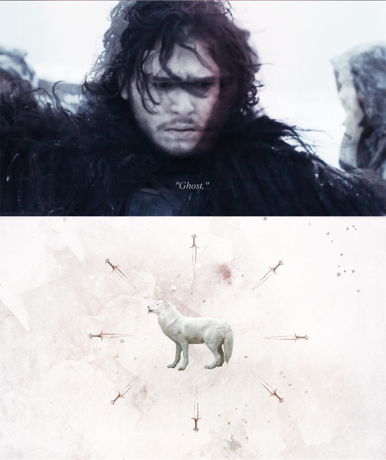 "The big white direwolf would not lie still. He paced from one end of the armory to the other, past the cold forge and back again. ""Easy, Ghost,"" Jon called. ""Down, Sit, Ghost, Down."" Yet when he made to touch him, the wolf bristled and bared his teeth. In the cold night air the wound was smoking. ""Ghost,"" he whispered."