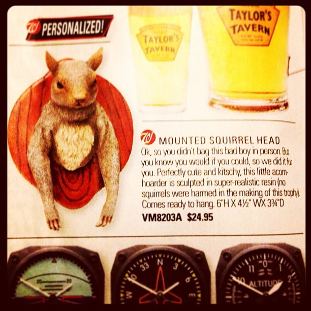 SkyMall: your one-stop shop for gorilla-armed demon squirrels.